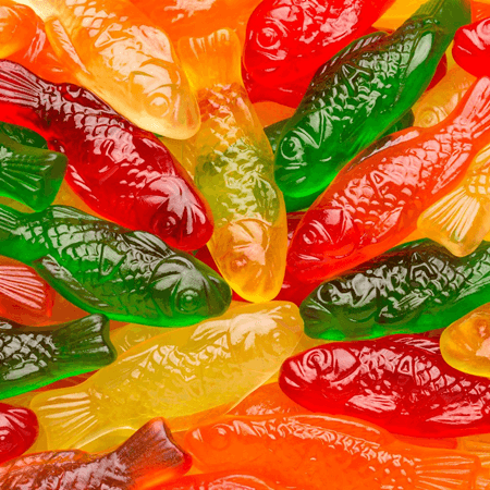 Gummi fish assortment colored candy assorted gummies for Gummy fish candy