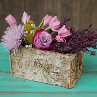 Rectangle Birch Bark Wood Planter 10.5