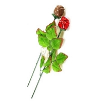 Single Red Chocolate Rose - 24ct