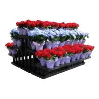 'FLORAL DISPLAYS' from the web at 'http://www.candyconceptsinc.com/assets/images/thumbnails/retail-flower-displays-for-sale-hp_thumbnail.jpg'