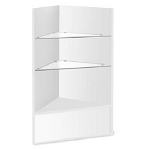 White Corner Case with Glass Shelves