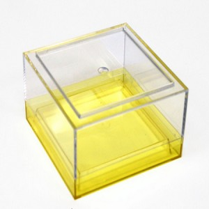 Small Box Canister with Colored Lid - 6ct