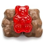Chocolate Covered Cinnamon Gummi Bears - 9lbs