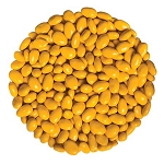 Yellow Sunbursts Sunflower Seeds - 5lbs