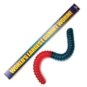 World's Largest Gummy Worm